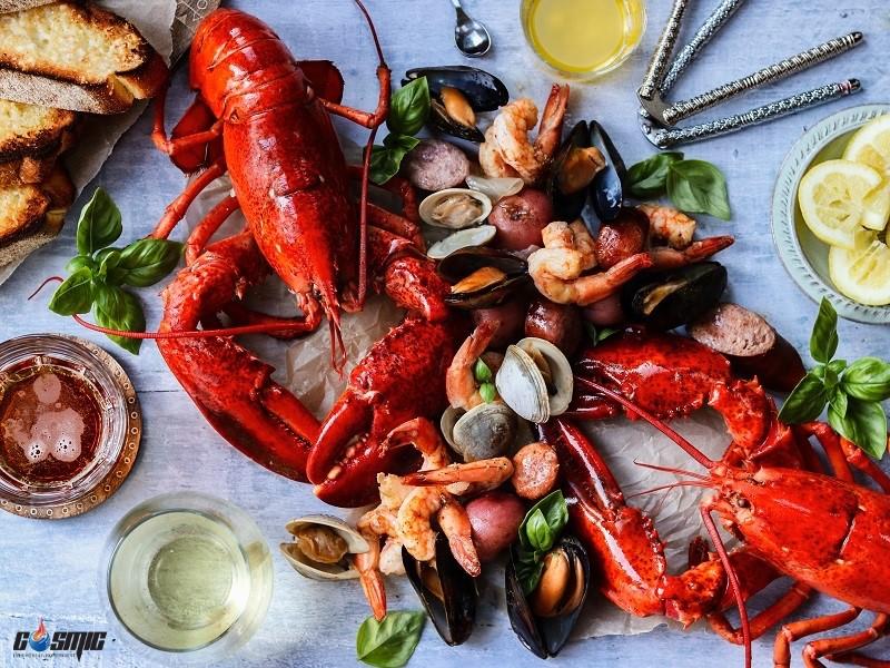 Angelo Po XS51M cấp đông thực phẩm giữ nguyên độ tươi và thành phần dinh dưỡng